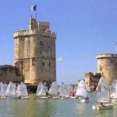 Colibris Charente-maritime